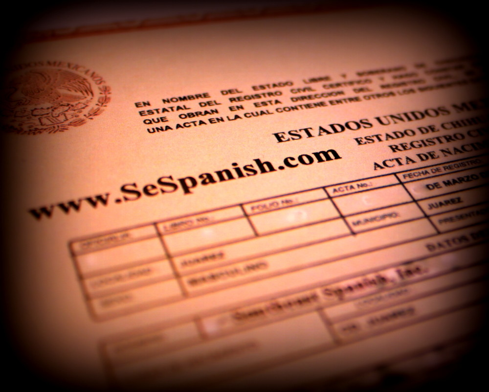 form i 485 spanish translation  Certified Translation Services in Denver, Spanish, French ...